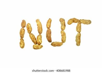 peanut in white background