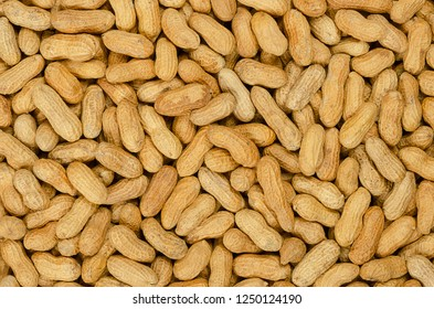 Peanuts with shell, background. Also groundnut or goober. Pile of unshelled, dry roasted whole pods of Arachis hypogaea, used as snack, oil crop and grain legume. Macro food photo close up from above.