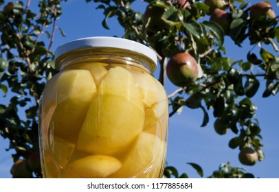 pear compote and blue sky