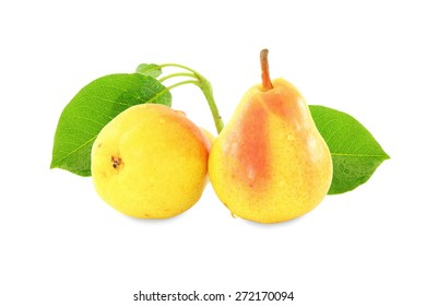 pear fruit  with leaves in pure white background