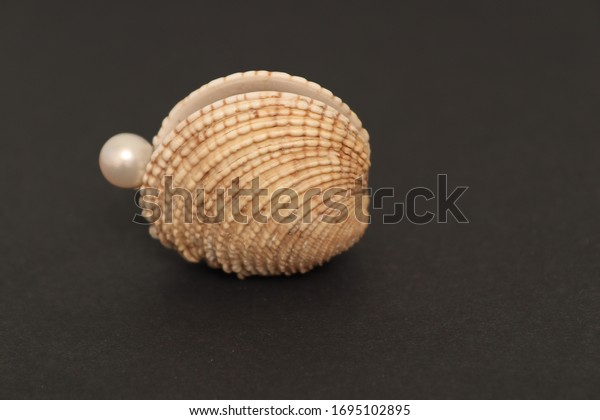 pearl-falling-out-seashell-on-600w-16951