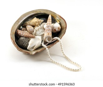 Pearl necklace in a large sea shell with small sea shells