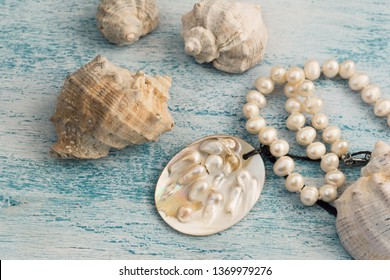 Pearl necklace and nacre seashell background. Details of an oyster containing a pearl