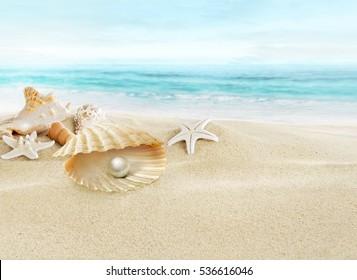 Pearl in open shell.