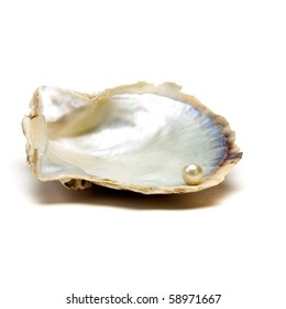 Pearl resting on open oyster shell to depict wealth concept isolated against white.