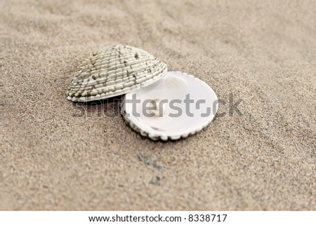 Pearl in shell on sand