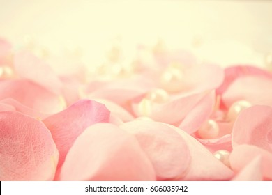 Pearls on a pink Rose petals