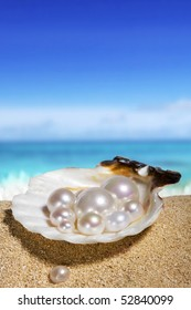 pearls in the shell on the beach