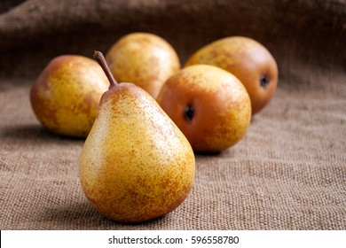 Pears. Pears harvest. Fruit background. Fresh organic pears on old sacking. Pear autumn harvest. Juicy flavorful pears of rustic background. Free space for text. Autumn nature concept.