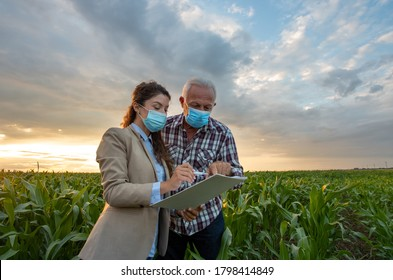 Peasant and business woman standing in corn field and looking in papers for signing documentation