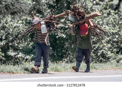 peasant children carrying wood to take her home, in the department of San Miguel, El Salvador. Central America. Photography August 2008