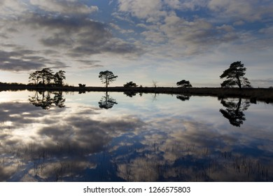 peat lake in evening sky in Dwingelderveld, the Netherlands