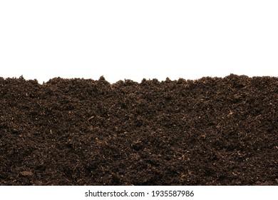 Peat moss isolaetd on white background