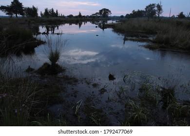 peat pool at sunrise in Dwingelderveld, the Netherlands