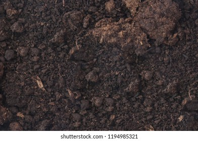 the peat soil background texture