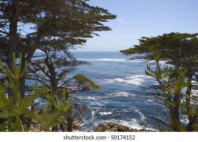 Pebble Beach coast in Monterey