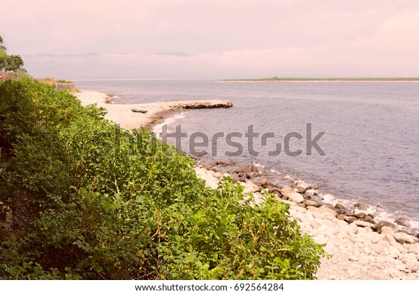 Pebble beach on the shore of the sea of Japan. Sea landscape on a summer day.