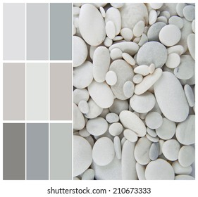 pebble color palette swatches with complimentary