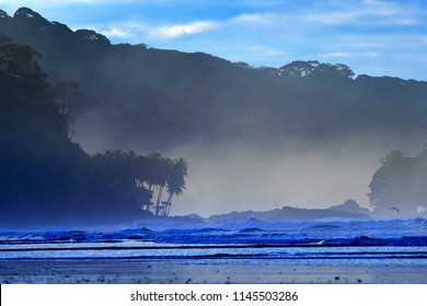 The pebble and sandy beach during sunrise, with dark blue waves and orange clouds, Costa Rica coast. Beautiful morning twilight sea landscape. Fog above ocean coast with tropic forest.