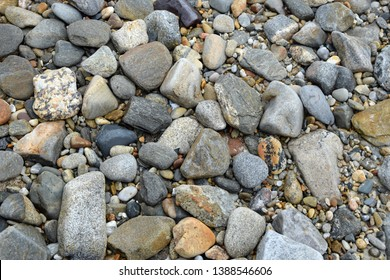 Pebbles at a coast in Brittany