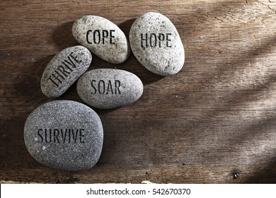 pebbles or stone with inspirational text hope, cope, survive, thrive and soar text on a zen stones