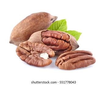 Pecan with leaves