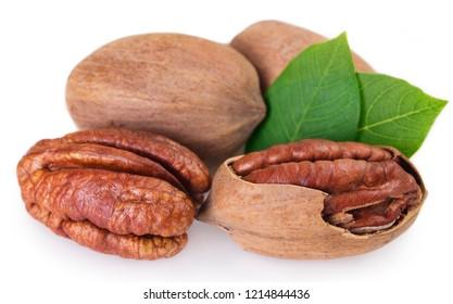 pecan nut isolated on white background