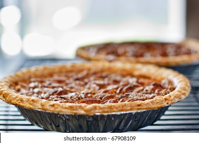 Pecan pies cooling on a rack in front of a window - Shallow DOF