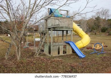 pecan tree by playground