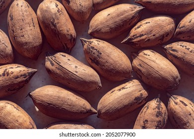 Pecans, unshelled, antioxidants. The concept of healthy, dietary products and proper nutrition, natural vitamins.