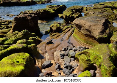 Peculiar shapes at low tide, The confital, coast of Gran canaria, Canary islands