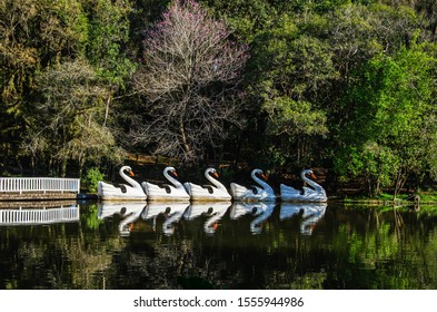 pedalboats in the lake with reflection in the water