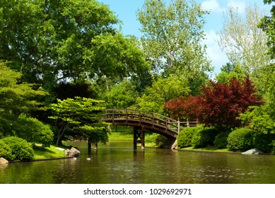 pedestrian bridge in park over water and beautiful plants trees