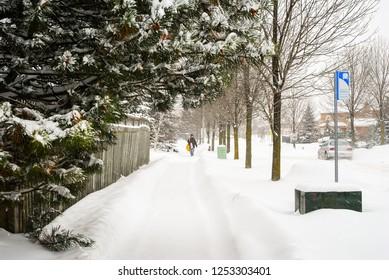 Pedestrian on a snowy street
