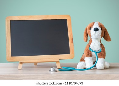Pediatric doctor for children medical healthcare and child nursing care or veterinary pet clinic with dog pet toy and blank black chalkboard background on pediatrician's work table in hospital