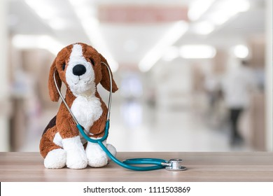 Pediatric doctor for children medical healthcare and child nursing care with dog pet toy, stethoscope on pediatrician's or veterinarian's clinic work table in veterinary hospital