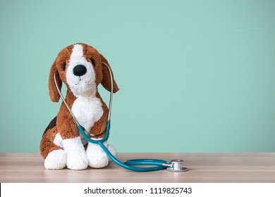 Pediatric doctor for children medical healthcare, child nursing care or veterinary clinic with dog pet toy, stethoscope and blank copy space wall on clinical work table workspace in hospital