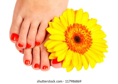 pedicure feet young woman and yellow gerber flower isolated on white background