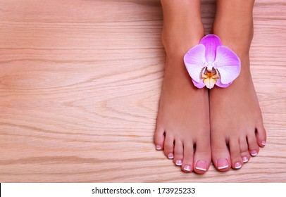 Pedicure with pink orchid flower on wooden background. Beautiful female feet with french manicure. Foot care. Spa