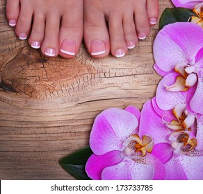 Pedicure with pink orchid flowers on wooden background. Beautiful female feet with french manicure. Foot care. Spa