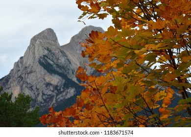 Pedraforca, spain, in autumn with trees