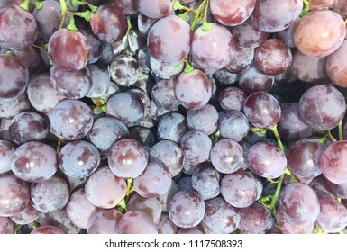 Peel of Shellac on grape. Shellac used to Food preservation keep the fruit longer and gives it a shiny protective coating.
