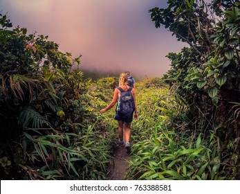 Peeled Mountain, MARTINIQUE / JANUARY 27 2017: hiking on the Peeled mountain (Montagne Pelée) on Martinique island