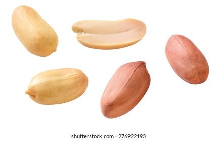peeled and opened peanuts
