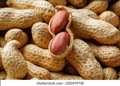 Peeled peanut on well peanuts. Peanuts, for background or textures.