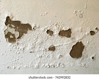 Peeling and cracking on cement wall painted color