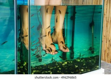 Peeling feet fish. Aquarium with fish that make peeling the legs woman.