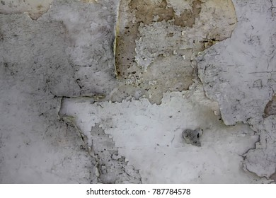 Peeling paint on the old wall.