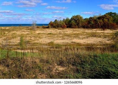 Peering out at the horizon of Lake Michigan from the sand dunes of Kenosha in autumn.