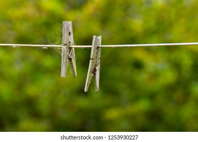 Pegs and cobwebs on a washing line